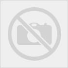 SGCBL News: Draft Pool Revealed