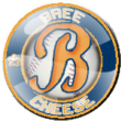 Bree Cheese